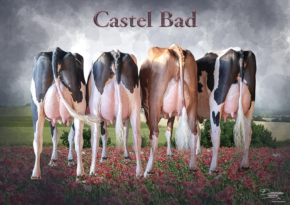 castel_bad-980